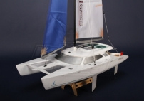 Gemini 600 R/C Racing Catamaran Plug-n-Play (600mm)